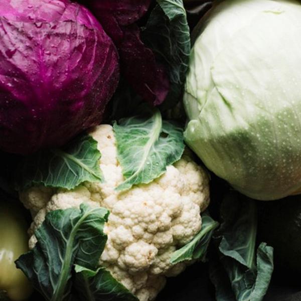 kapustovita zelenina